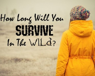 How long will you survive in the wild?