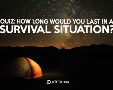 How long would you last in a survival situation quiz