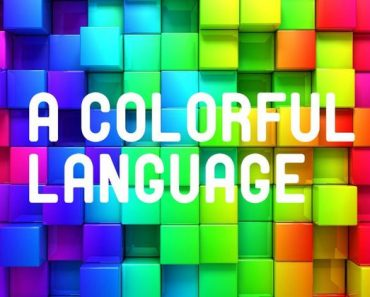 match the colors to the words in another language trivia quiz