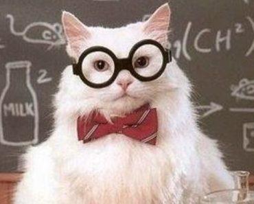 periodic table science trivia quiz