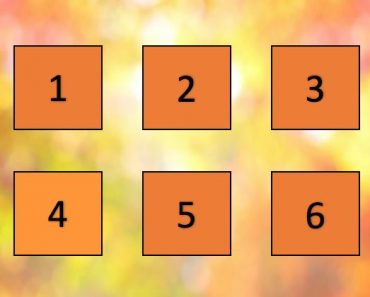 colors of autumn quiz