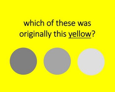 shades of color vision test