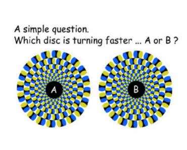 optical illusion perception quiz add