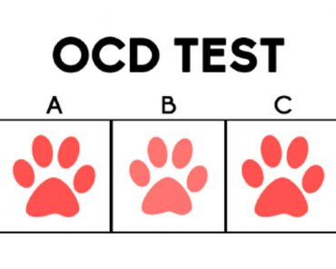 ocd radar test