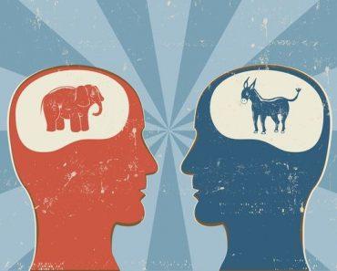 political philosophy quiz