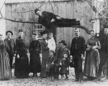 family tree logic quiz