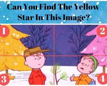 charlie brown christmas trivia quiz