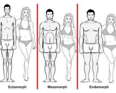 what is my body type quiz